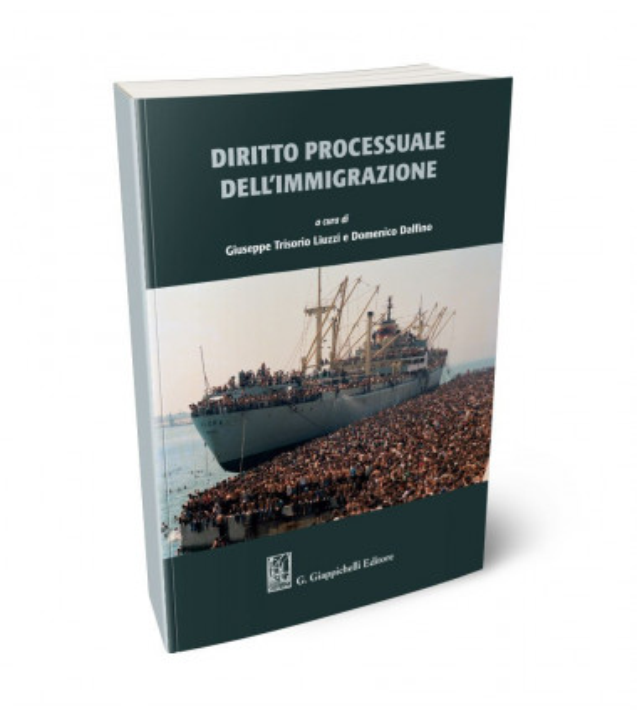 Diritto processuale dell'immigrazione